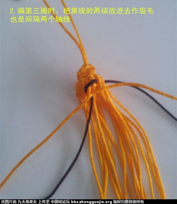 中国结论坛 植物大战僵尸-玉米投手教程  立体绳结教程与交流区 142936luotwu0xtbv5nks1
