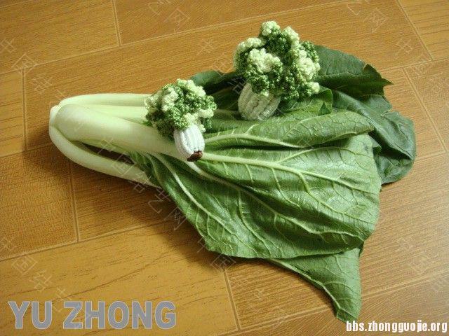 中国结论坛 蔬果集 (2012-02-28更新)  立体绳结教程与交流区 134540xuc6n43gu7nqn6tn