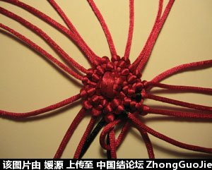中国结论坛 5号线编的草莓教程  立体绳结教程与交流区 1605184bs48kn0zl84hy4b