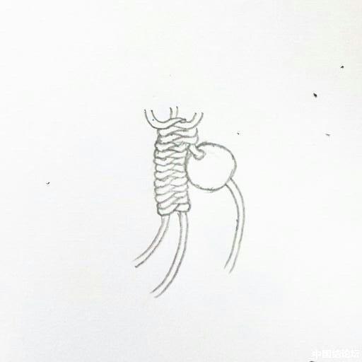 中国结论坛 蛇结波浪形玛瑙手链(新增手绘教程)  作品展示 16430704txc4txtoxw7xl0