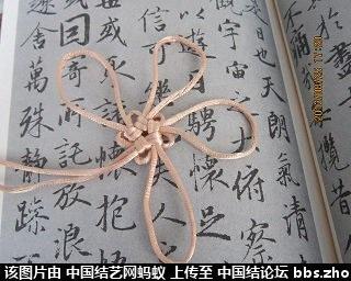 中国结论坛   一线生机-杨朝宗专栏 184236iazuay60zcjap5ju