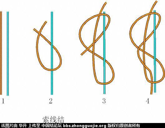 中国结论坛 两圈索线结(右线不动,左线绕线)  基本结-新手入门必看 170743azt5xtota5utr3ll