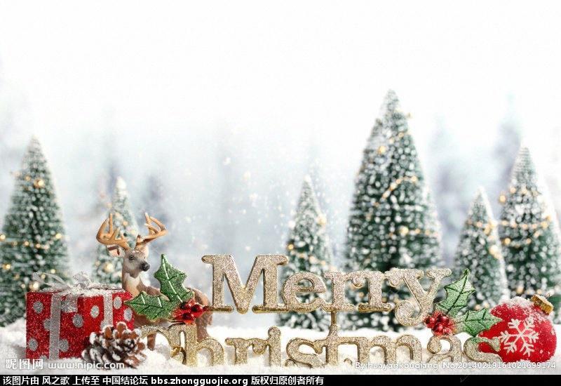 中国结论坛 【Merry Christmas】 沉默的羔羊,一目了然 立体绳结教程与交流区 2126061b65p1ojpoy32ek2