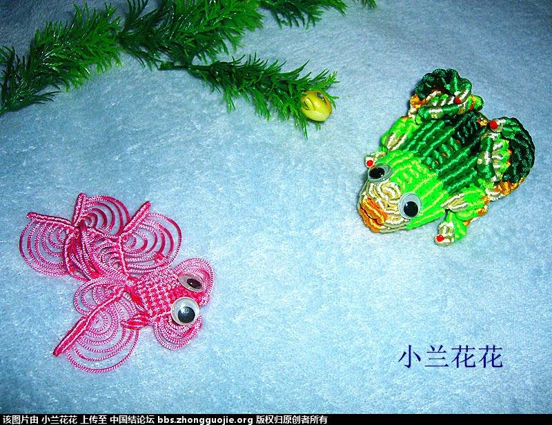 中国结论坛 小兰花花个人作品集 兰花花,作品集 作品展示 212818fa2afh6cqcq6yjac