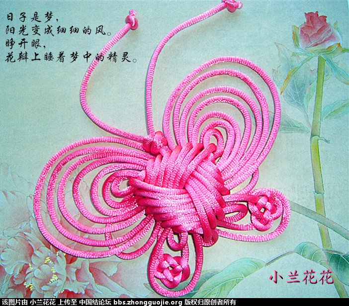 中国结论坛 小兰花花个人作品集 兰花花,作品集 作品展示 212919k7bu7gb5mmqu22b4