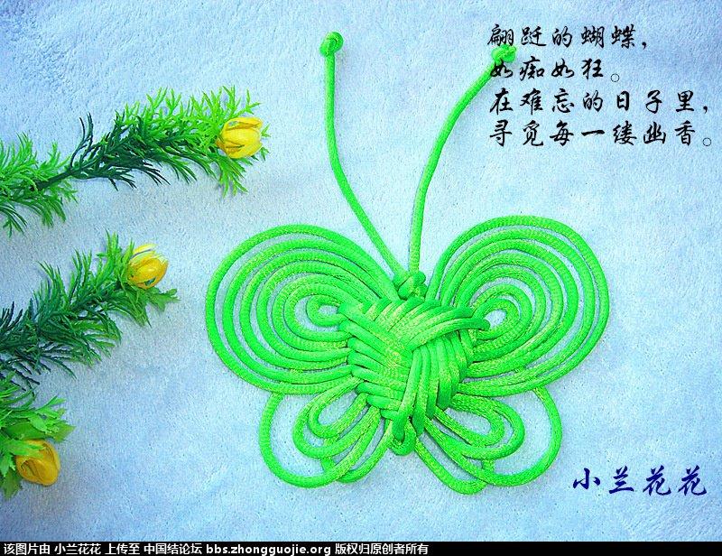 中国结论坛 小兰花花个人作品集 兰花花,作品集 作品展示 212937vez1g9exua17ea5r