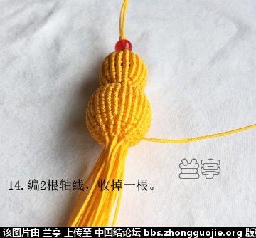 中国结论坛 小葫芦(补充图片) 图片,博客,记录 兰亭结艺 181820kgkg6k9s6rkdk09o
