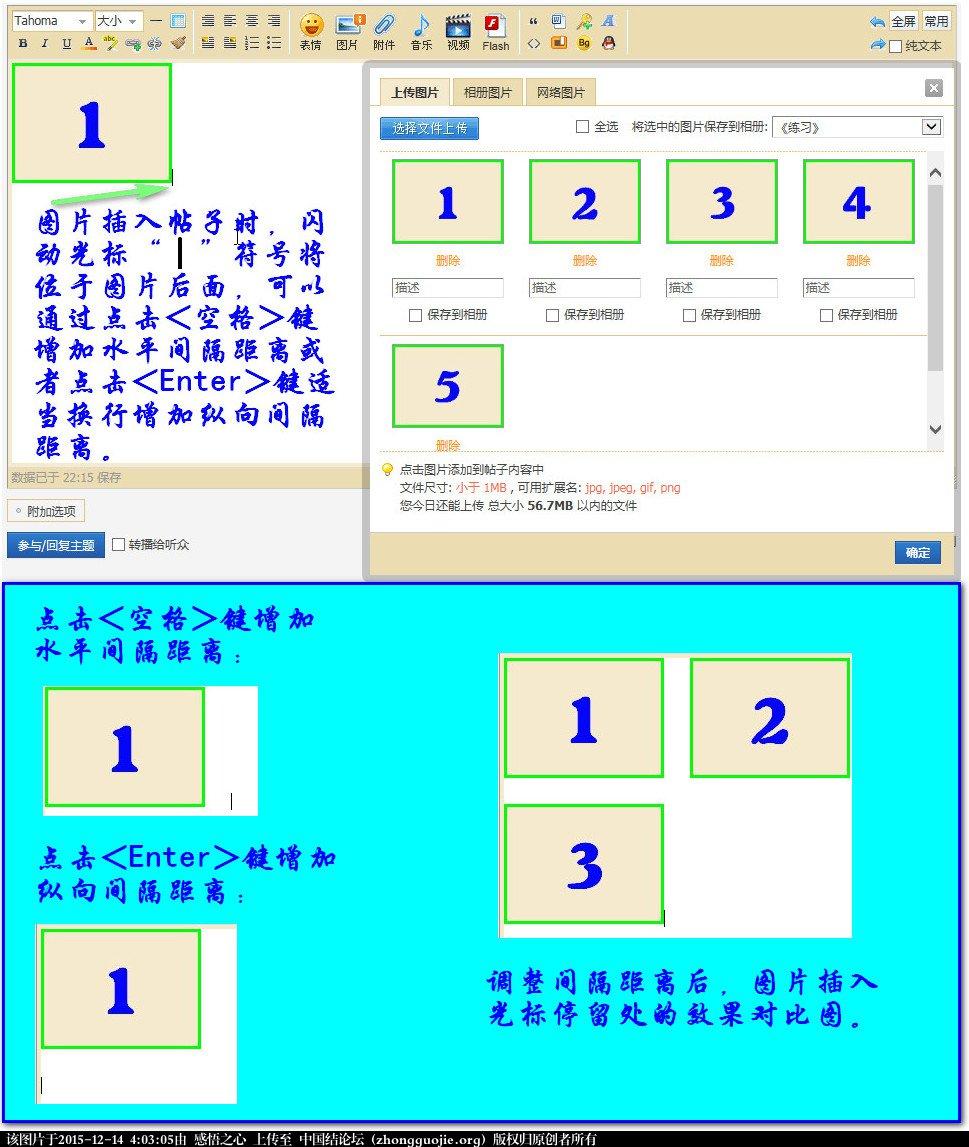 中国结论坛 【操作说明】主题帖子图片编辑操作 图片,主题 论坛使用帮助 033429yb8pw9n91n29jtgg