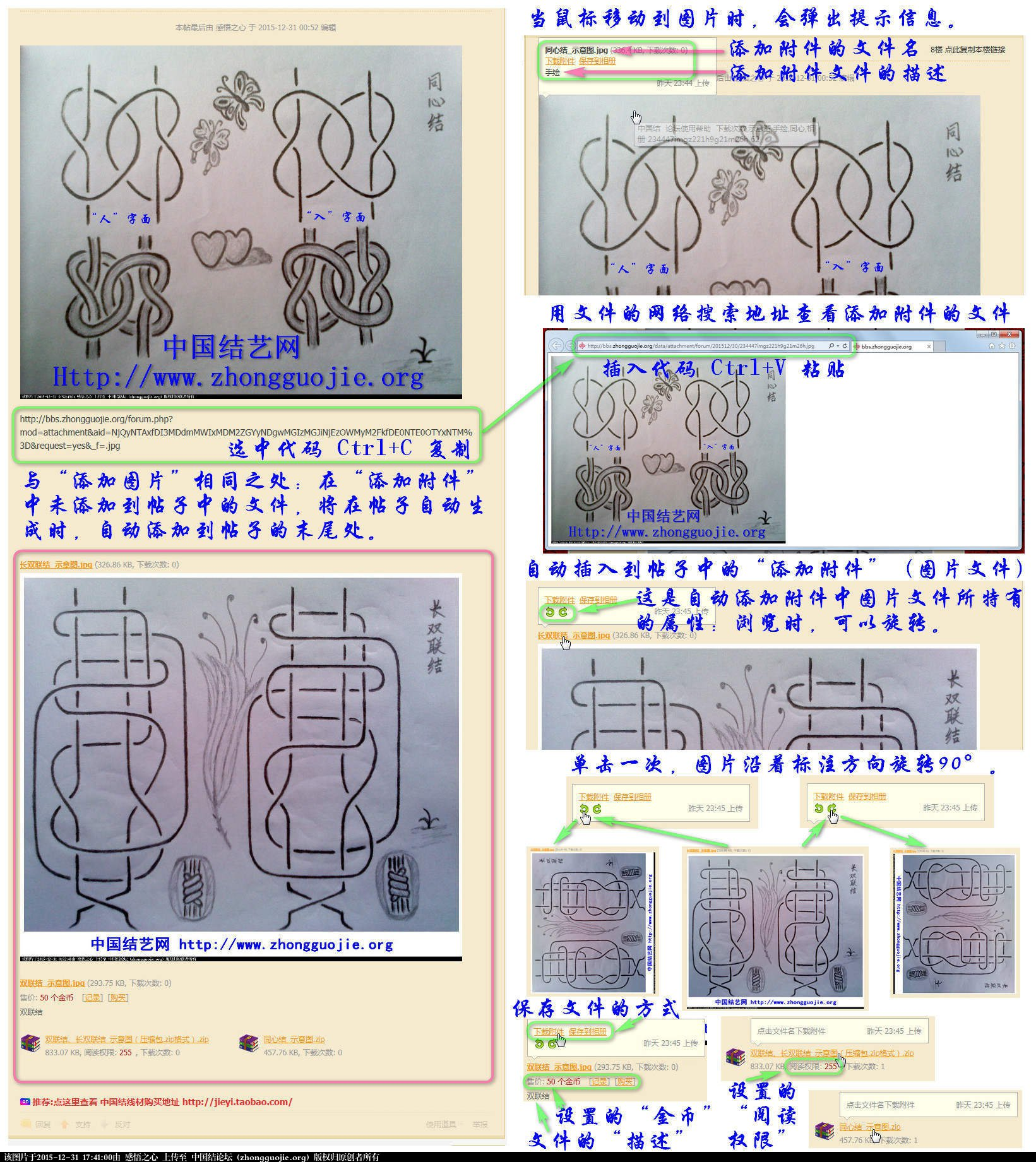 中国结论坛   论坛使用帮助 174026jr9s992hfw90szes