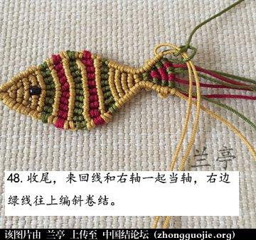 中国结论坛 过年给小孩编条小鱼手链吧(年年有余)  兰亭结艺 082402vc55556v9a9y6z5m
