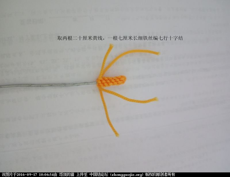 中国结论坛 马蹄莲小挂饰的两种编法 马蹄莲 立体绳结教程与交流区 095719ylhj8hnhlo8jg90h