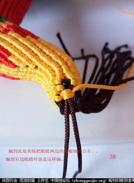 中国结论坛 宝鸡报晓希望 做广告,宝鸡 立体绳结教程与交流区 231038rj7qcmg7cg0gd0cq
