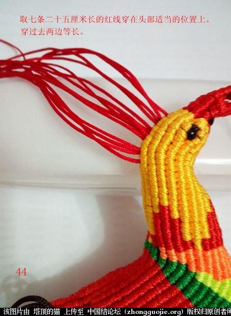 中国结论坛 宝鸡报晓希望 做广告,宝鸡 立体绳结教程与交流区 231041ncyocgwc7w8829ip