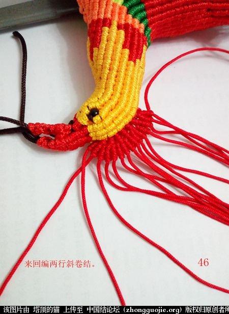 中国结论坛 宝鸡报晓希望 做广告,宝鸡 立体绳结教程与交流区 231042p7mm1q9glzm1f4ld