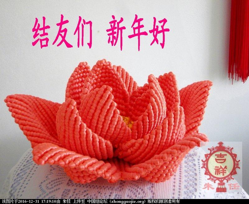 中国结论坛 荷美(和美)  作品展示 171759bs51zwb8aaws3xpy