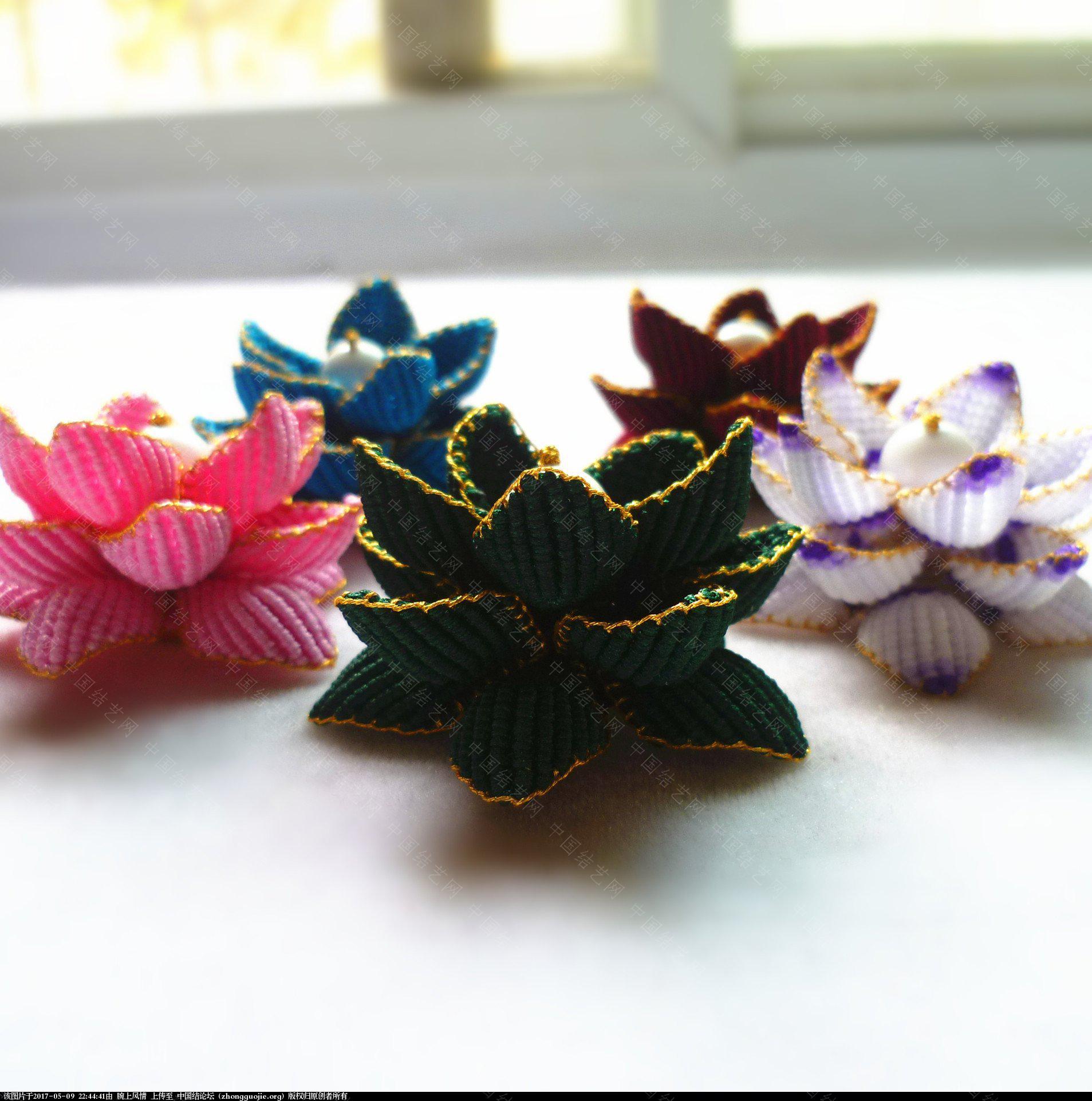 中国结论坛 很久没发作品了,我也跟风晒晒莲花 莲花 作品展示 224320tp6p6voln6l1momt