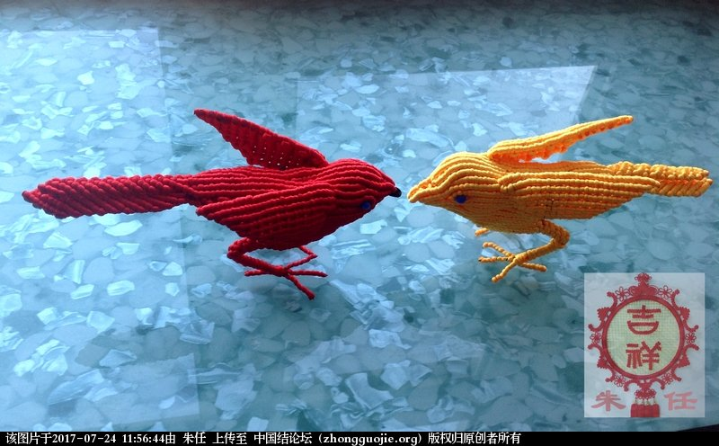 中国结论坛 红鸟黄鸟  作品展示 115308v2dchom2a5fq2nlo
