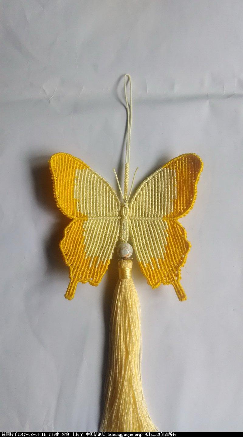 中国结论坛 我的鳳蝶  作品展示 114036v28lymyuu8hhyqw8