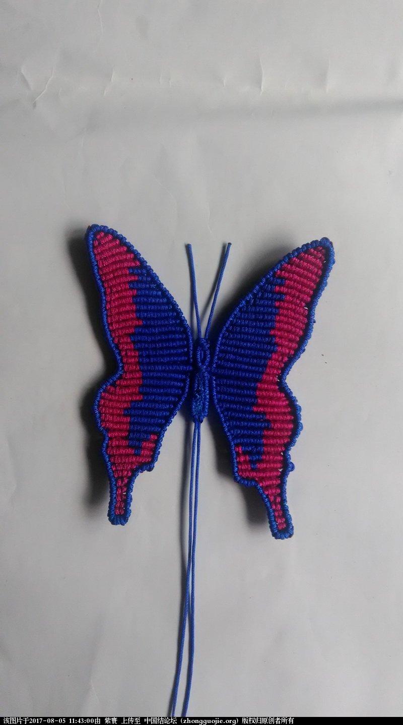 中国结论坛 我的鳳蝶  作品展示 114214t07p2gj3vdwhjvjd