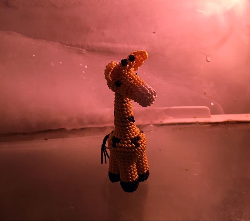 中国结论坛 长颈鹿还在冰箱里  作品展示 203906ogumg5vme0gtu9tb