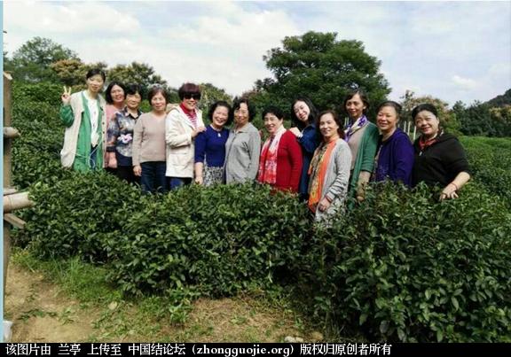 中国结论坛 美丽的星期二---记杭州结艺沙龙活动  结艺网各地联谊会 172519mq65p2bapc5en9s9