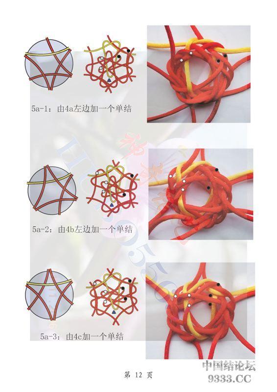 六耳藻井结结体变化图_页面_12.jpg
