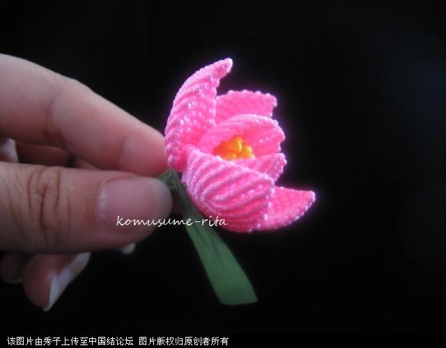 中国结论坛 我荷花的組合過程  立体绳结教程与交流区 10060518581fd44b25285f0c4d