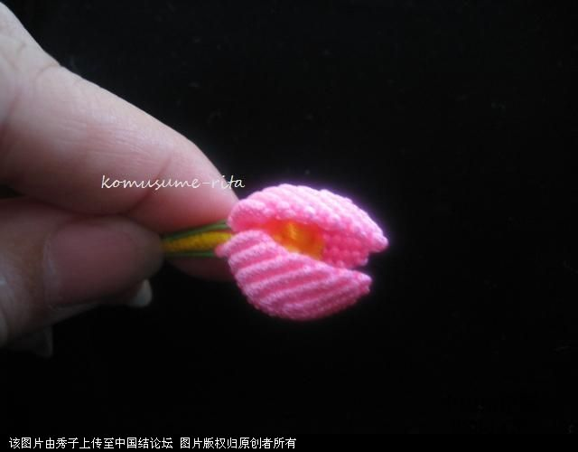 中国结论坛 我荷花的組合過程  立体绳结教程与交流区 1006051858489c629e3e56dbdf