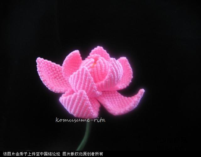 中国结论坛 我荷花的組合過程  立体绳结教程与交流区 1006051858a13adafc704e993f