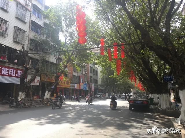红灯笼、中国结扮靓高州街头,年味扑面来,你回家了吗?