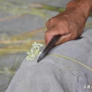 传统竹编制作,号称的纯手工能有多少?看完这几点就都明白了
