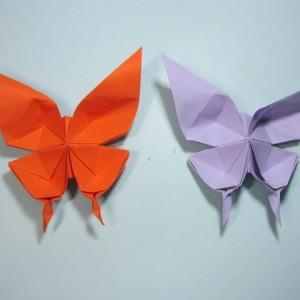 凤尾蝶折纸步骤图解,儿童手工折纸蝴蝶折法教程