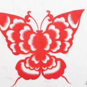 剪窗花的制作过程,手工剪纸蝴蝶详细教程