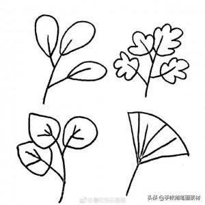叶子简笔画图片大全,36种不同形状简单可爱的的叶子绘画步骤