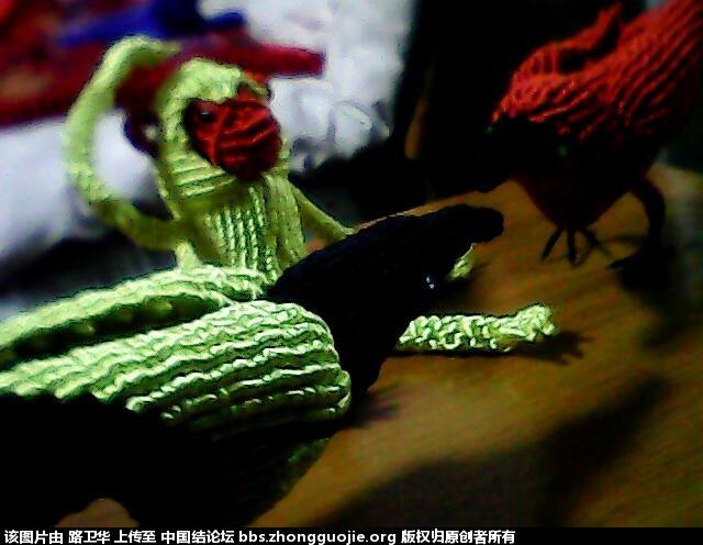 中国结论坛 猴子 宠物猴煮死主人孩子,女人养猴子可以做吗,猴子怎么能去掉,猴子高清图片,千万别养猴子 立体绳结教程与交流区 210527syodfw3jcvfplp3f