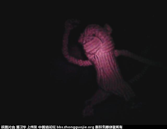中国结论坛 猴子  立体绳结教程与交流区 210533jirs7xprrbr7pprm
