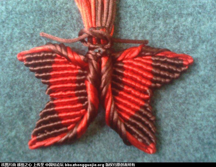 中国结论坛 小蝴蝶的编织过程 编织,蝴蝶 立体绳结教程与交流区 16013549d4yva3d1vq3yxk