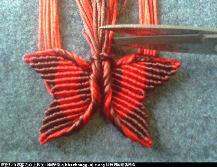 中国结论坛 小蝴蝶的编织过程 编织,蝴蝶 立体绳结教程与交流区 160142hxrums2bfdraafu2