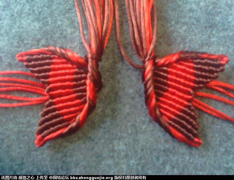 中国结论坛 小蝴蝶的编织过程 编织,蝴蝶 立体绳结教程与交流区 160150yza1fv7we2vff746