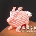 交第一个作业--兔子