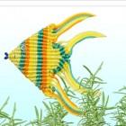 熱帶魚   小作品