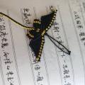 蝴蝶翩翩飞