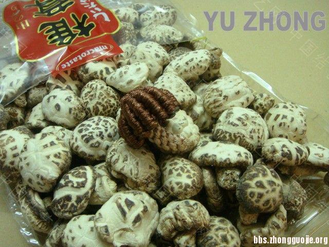 中国结论坛 蔬果集 (2012-02-28更新)  立体绳结教程与交流区 134626q6mxqmfxlmttz9ll