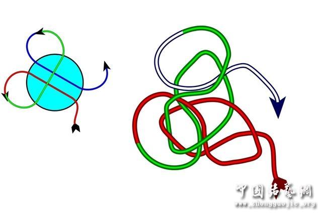 中国结论坛 四耳A型旋叶结单结练习1  冰花结(华瑶结)的教程与讨论区 220941o7zi4m977mzporou