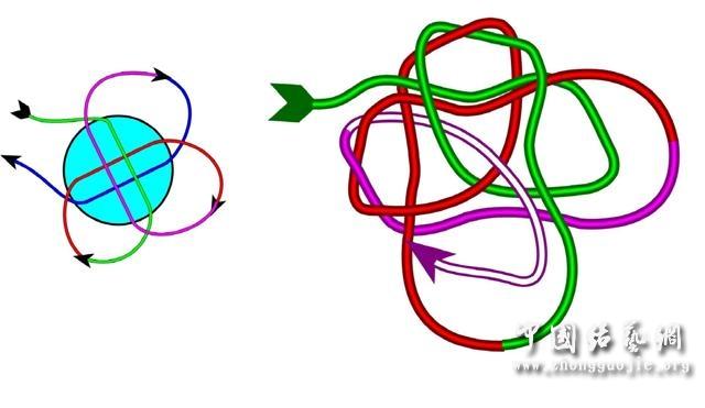中国结论坛 四耳A型旋叶结单结练习2  冰花结(华瑶结)的教程与讨论区 2106526askzmt7sprtt32u