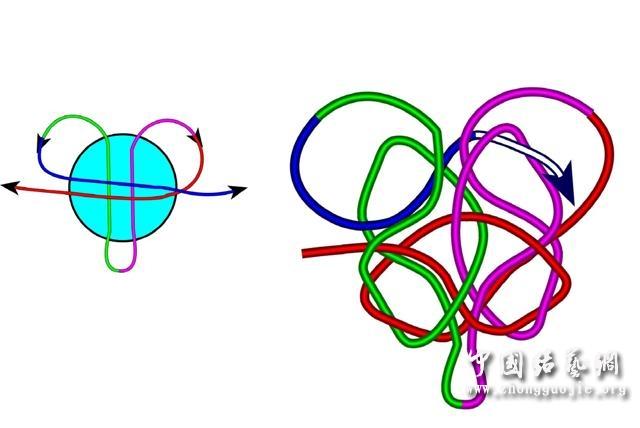 中国结论坛 四耳A型旋叶结单结练习3  冰花结(华瑶结)的教程与讨论区 101522w6llgta00olt6kv6