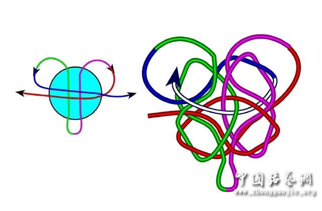 中国结论坛 四耳A型旋叶结单结练习3  冰花结(华瑶结)的教程与讨论区 1015245skcz4yyf4u5a6nt