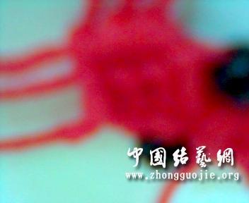 中国结论坛 新版小金鱼  立体绳结教程与交流区 21472705bhluh0b5wlbzuk