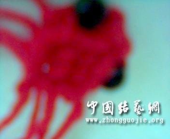 中国结论坛 新版小金鱼  立体绳结教程与交流区 214728ymujnasmv6mmaary