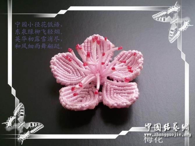 中国结论坛 梅花--教程(适合有点基础的人)  立体绳结教程与交流区 1105242020562ceb55d8cf2703